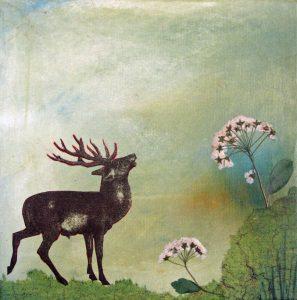 deer.21
