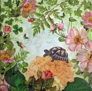 turtle.2